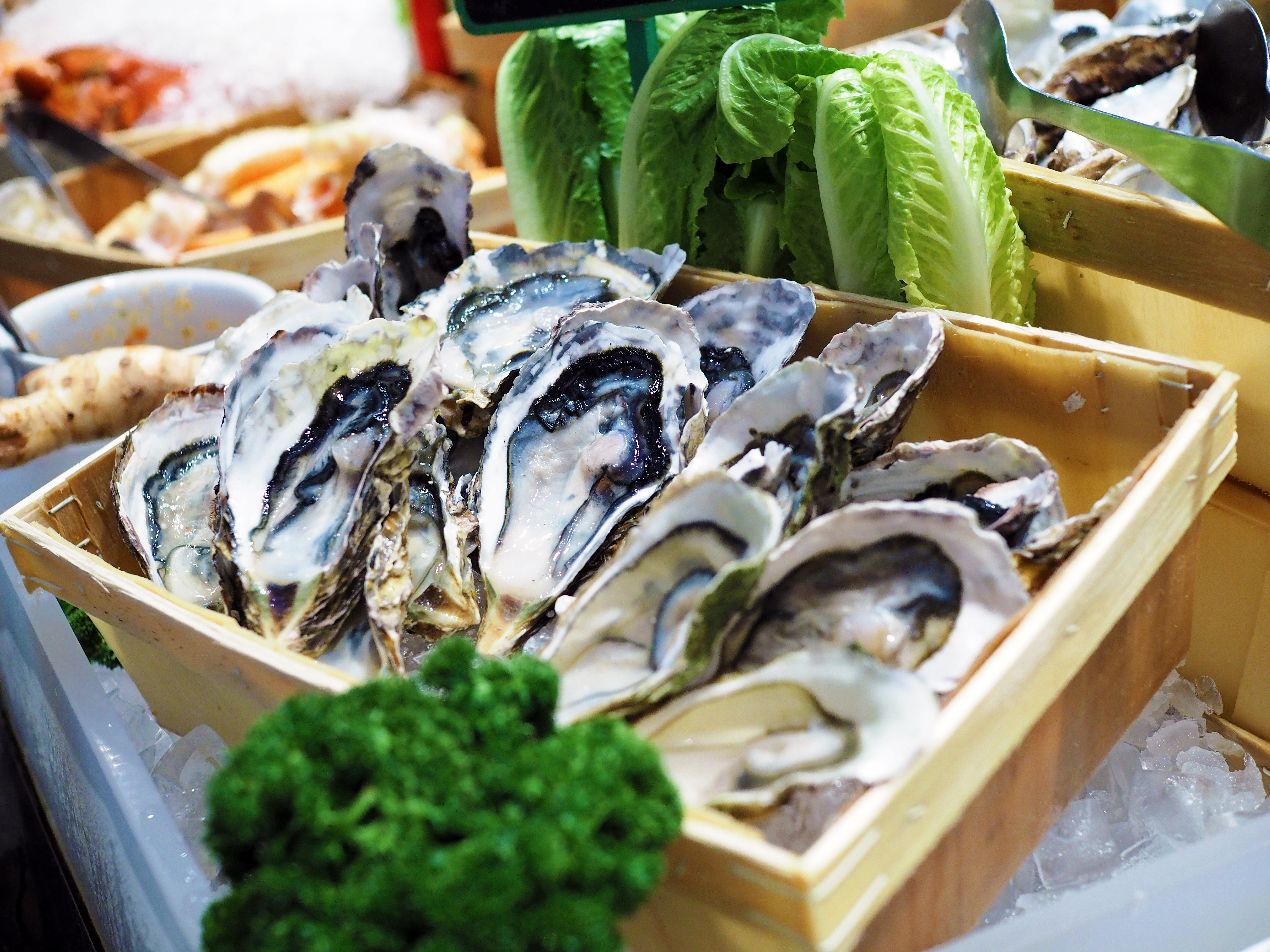 food service market research buffet oyster