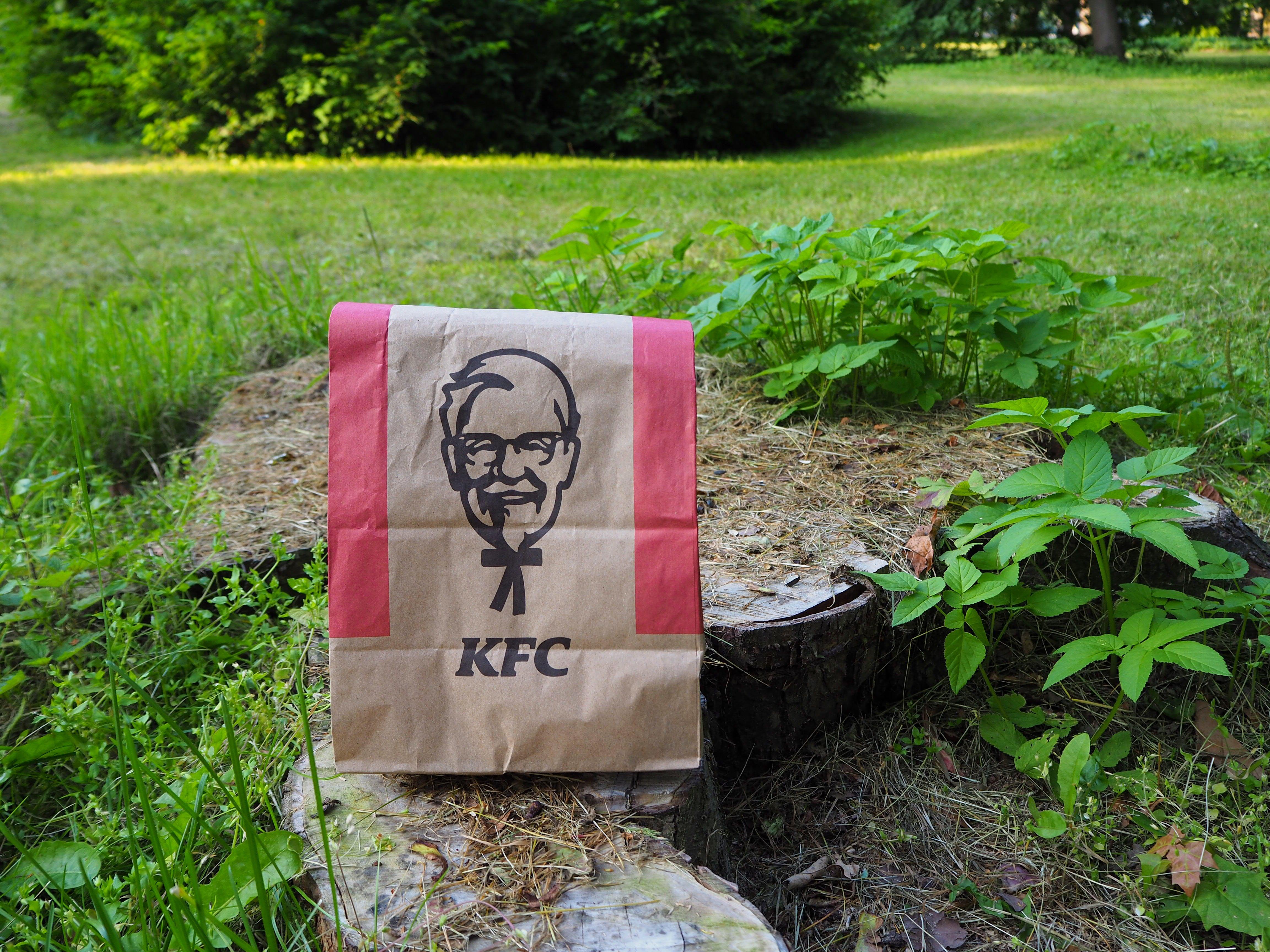 food service market research kfc bag