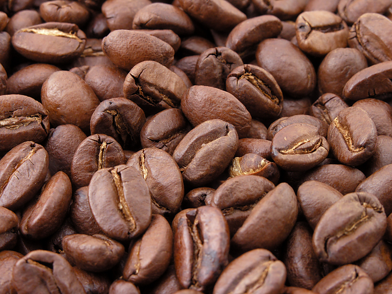 market research coffee bean