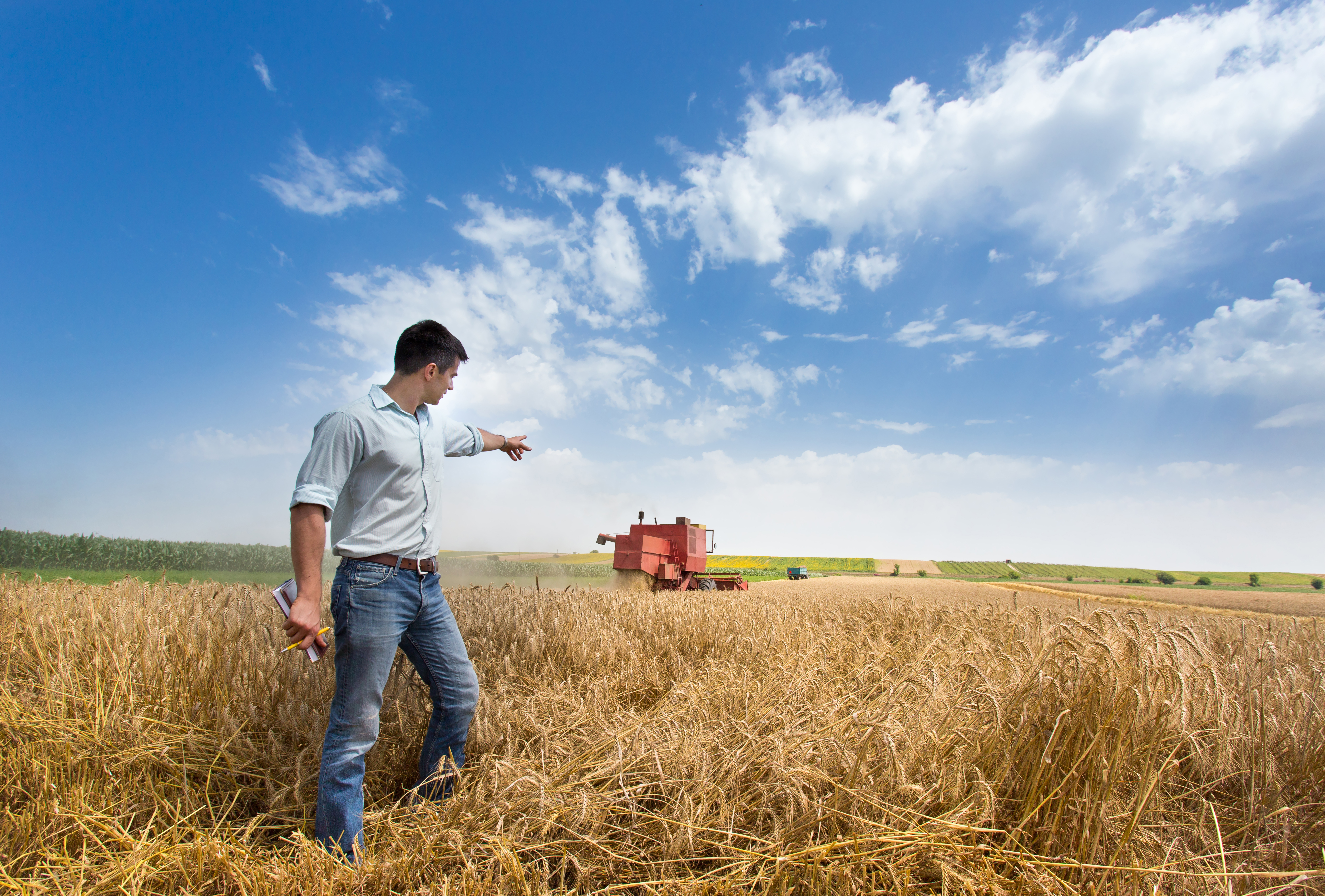 market research handsome farmer